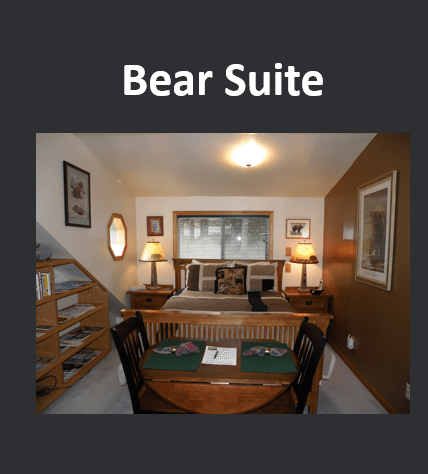 SMILING_BEAR_Bear_Suite__475_x_450